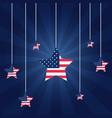 american flag star patriotic symbol vector image vector image