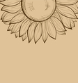 background with sunflower vector image