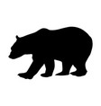 bear silhouette isolated on white background vector image vector image