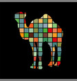 camel mammal color silhouette animal vector image vector image