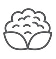 cauliflower line icon vegetable and diet vector image vector image