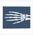 Hand X-ray picture vector image