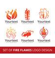set fire flame logo vector image