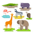 set of african animals on the pieces of land vector image vector image