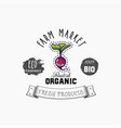 bio sticker and eco products radish web element vector image