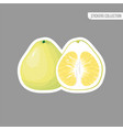 cartoon fresh pomelo isolated sticker vector image vector image