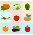 colored icons fresh vegetables vector image vector image