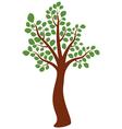 elm tree vector image vector image