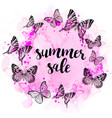 summer abstract background with butterflies vector image vector image