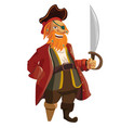 cartoon pirate isolated on vector image