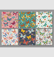 collection 6 seamless patterns with butterflies vector image
