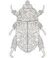 darkling beetle anti stress coloring book vector image vector image