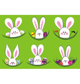 Colorful easter rabbit collection vector image