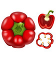 fresh capsicum with different cuts vector image