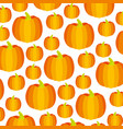 golden pumpkin vegetable fresh pattern vector image vector image