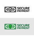 secure payment icon vector image
