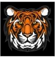 Tigers Face of a tiger head vector image vector image