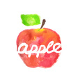 Watercolor apple lettering vector image