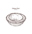 baked cheese tart hand draw sketch vector image