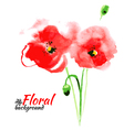 Beautiful watercolor paint red poppy vector image vector image