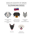 dogs by country belgium 1 vector image vector image