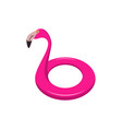 flamingo swimming float vector image vector image