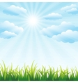 Green grass field and blue sky vector image