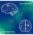Human brain projections vector image vector image