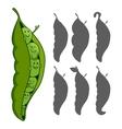 Pea Pod vector image