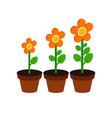 plant growth stages symbol flat isometric icon or vector image vector image