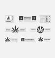 sativa and indica cannabis logo design on a white vector image vector image