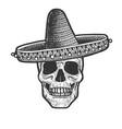 skull in mexican sombrero sketch vector image