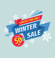 winter sale banner concept design discount vector image