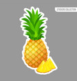 cartoon fresh pineapple isolated sticker vector image vector image
