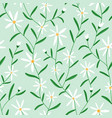 daisy flowers on mint seamless pattern vector image vector image