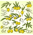 olive icons set vector image vector image