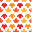 seamless wallpaper Autumn maple leaves vector image vector image