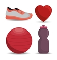 collection equipment work gym vector image vector image