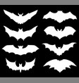 halloween icons set of bats in black vector image vector image