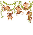 monkey on vine vector image vector image