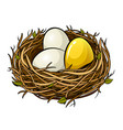 nest with golden egg pop art vector image