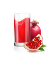 pomegranate juice in a glass vector image