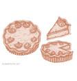 set hand drawn pastel pumpkin pie vector image