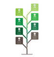 vertical timeline infographics tree of vector image vector image