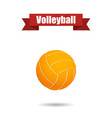 volleyball ball with shadow vector image vector image