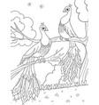 cartoon coloring for children a bird a feather vector image