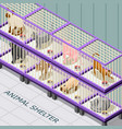 cat shelter isometric background vector image vector image