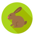 Easter Rabbit Circle Icon with long Shadow vector image vector image