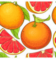 grapefruit fruits pattern vector image vector image