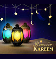 lanterns stand in desert at night sky vector image
